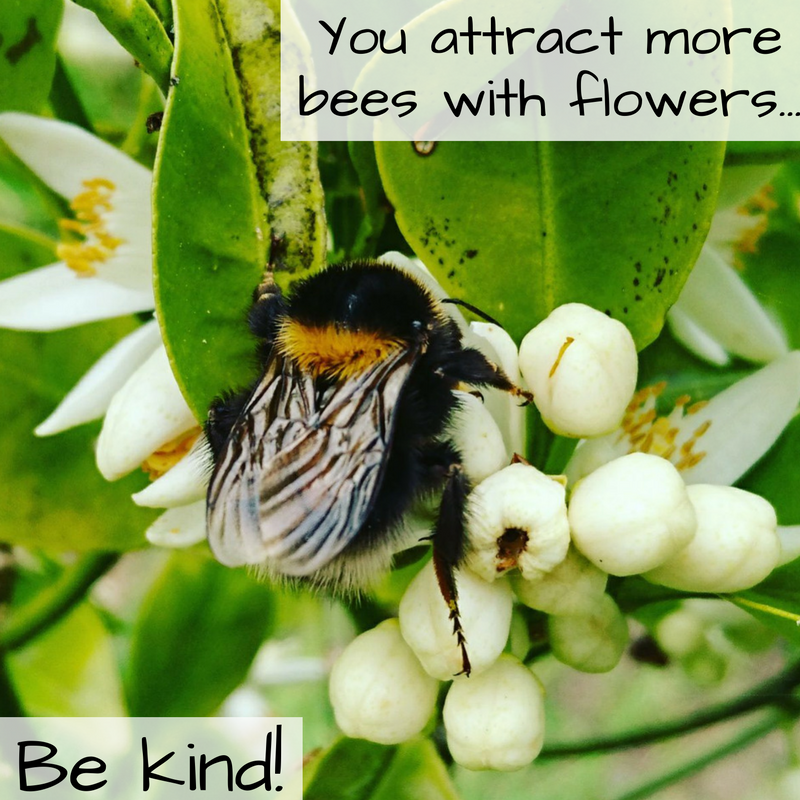 You attract more bees with flowers....png